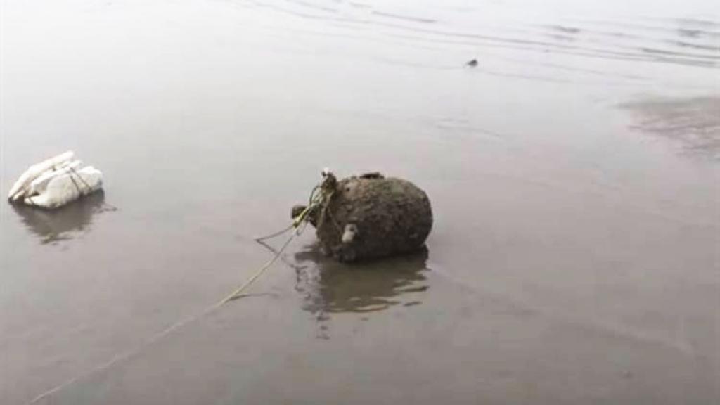 لغم بحري حوثي يقع في شبكة صياد بدلاً عن السمك في الحديدة
